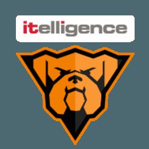 itelligence-Bulldogs-Brno-logo